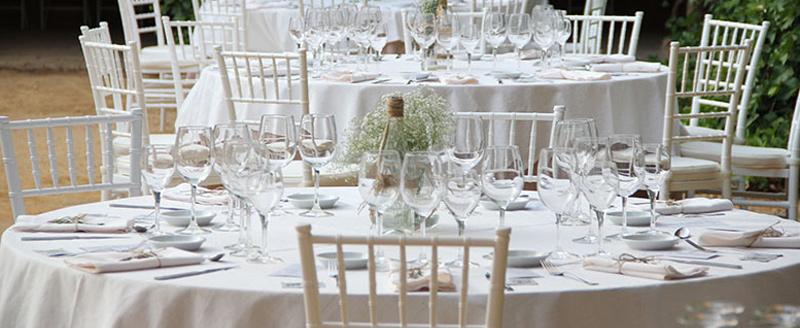 Alquiler y Venta de Sillas para Bodas, Eventos y Catering
